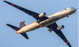 空中客车信天翁采用复合材料制成的扑翼