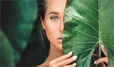 Clean Beauty指南指南:认证、成分和宣称